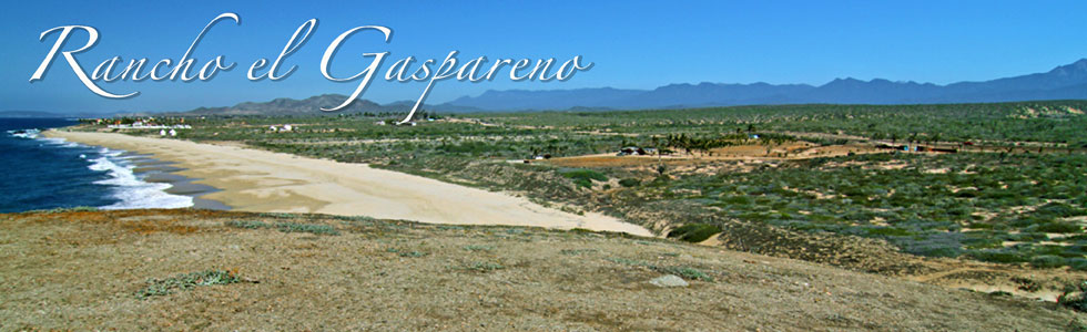 Rancho Gaspareno, Development ready land for sale north of Cabo